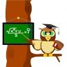 Owl by bandrat